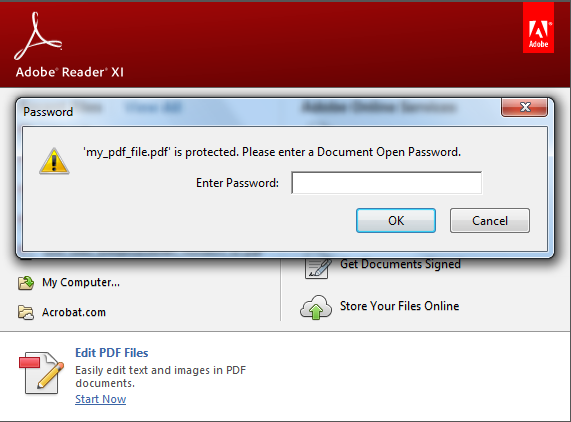 Protected PDF File