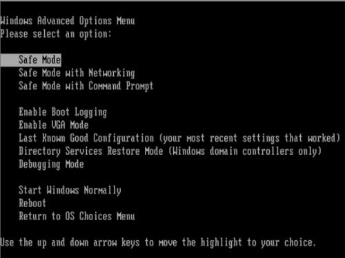 Smart Fortress 2012 Windows XP Advanced Options Menu